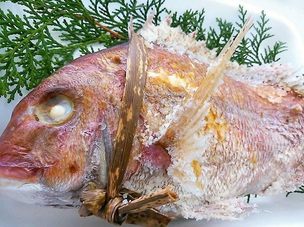 天然明石鯛 炭火焼 五つ星ひょうご 祝い鯛 焼き鯛