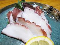 たこ タコ 蛸