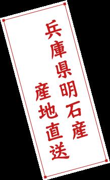 兵庫県明石産 産地直送