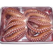 明石産 茹で蛸 ゆでタコ  2匹~3匹セット 約950g~1000g 明石のお土産