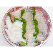 2月~4月 明石産 天然魚のお刺身 旬のお魚 店長お勧め