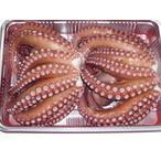 タコ たk 蛸