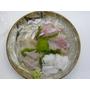 sashimi 刺身 さしみ